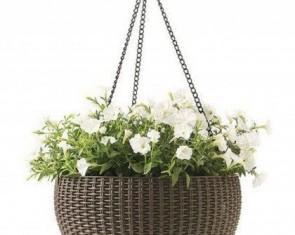 Квіткові горщики і кашпо