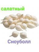 Озима цибуля сіянка Сноуболл Snowball 821 1кг TOP Onion Sets