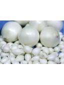 Цибулю - сіянку Сноубол Snowball Голландія 1 кг