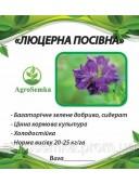 Насіння трави Люцерна магниченная багаторічна посівна 1 кг урожай 2019 р