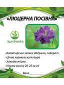 Насіння трави Люцерна магниченная багаторічна посівна 1 кг урожай 2020 р