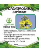 Трава Горлиця озима Суріпиця сидерат 1кг